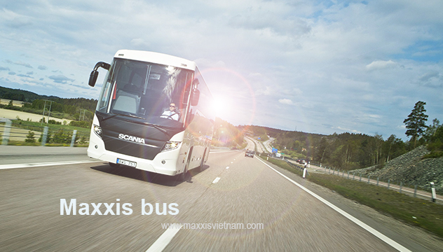 Maxxis bus